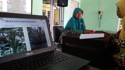 Program Pokja III TP PKK Bantul, Tanaman OKRA : Kaya Manfaat